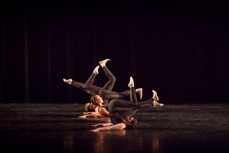 Wild Gestures Dance: A Compilation of Repertory